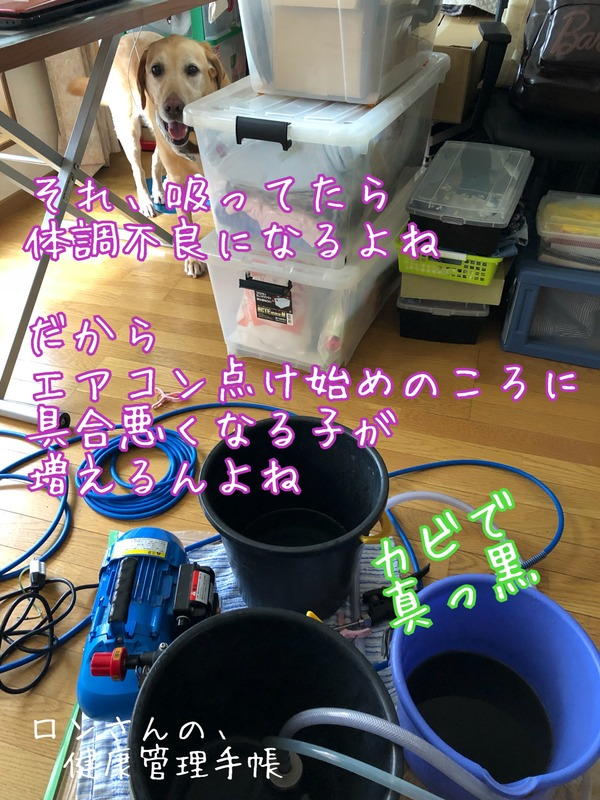 IMG_8090