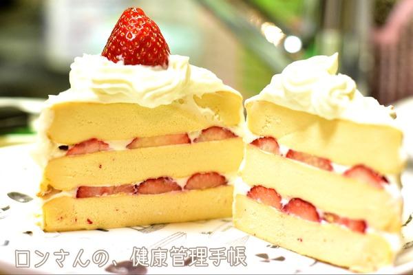 苺のショート風 犬ケーキ 2