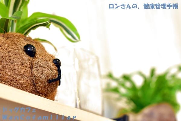 20191002 狭山ヶ丘 WanCofamiliar 92
