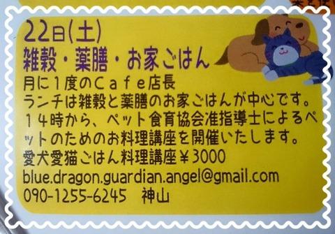 8月22日 第5回【愛犬・愛猫ごはん料理講座】