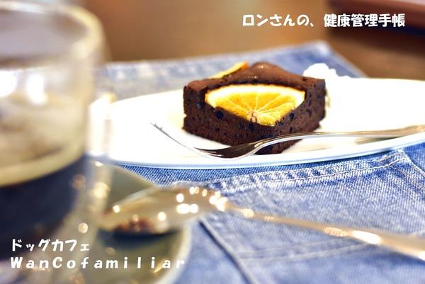 20191002 狭山ヶ丘 WanCofamiliar 5
