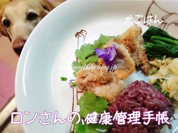 20161202 家族とおそろい犬ごはん 4