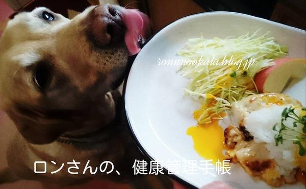 20160401 鶏ムネ 大根おろしの お揃いごはん 2