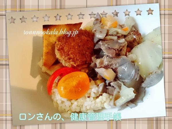 20151119 鰤ムニエル 高野豆腐 ハンバーグ 5