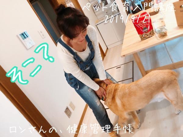 20190921 入門講座 (1)
