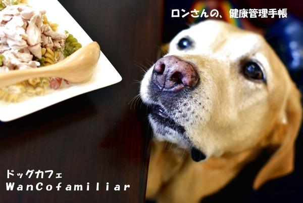 20191002 狭山ヶ丘 WanCofamiliar 7