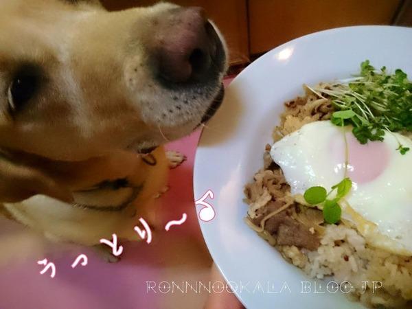 20150929 ロンご飯 肉の日 5