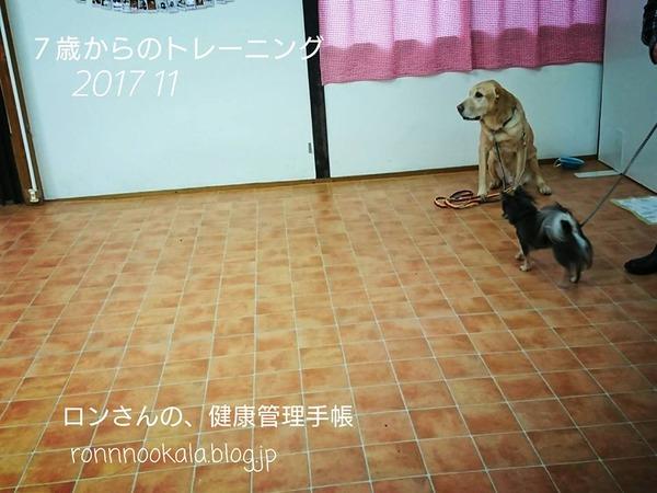 20171108 トレーニング 2