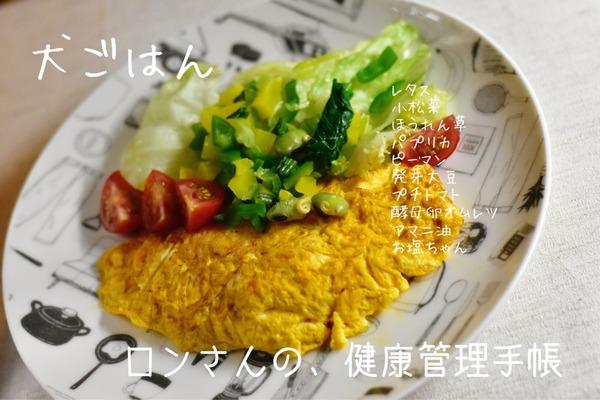 IMG_6489