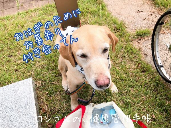 20190924 おはぎとお墓参り (25)