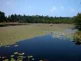 野呂山-氷池-050725