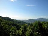 うさちゃんの山