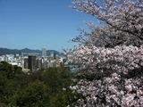 比治山から広島市を望む