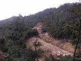 白糸川の土石流現場