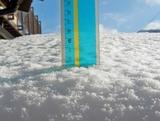 積雪12.5cm
