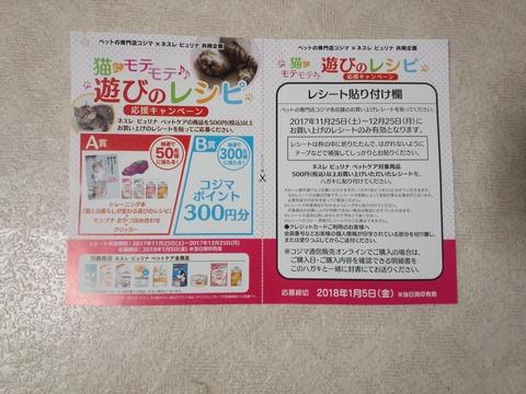 DSC_0109 (2)