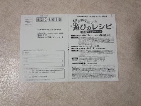 DSC_0110 (2)