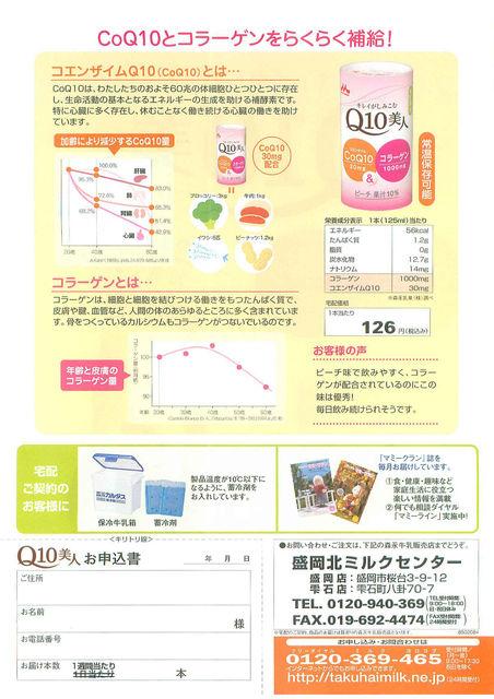 Q10美人チラシ(裏)