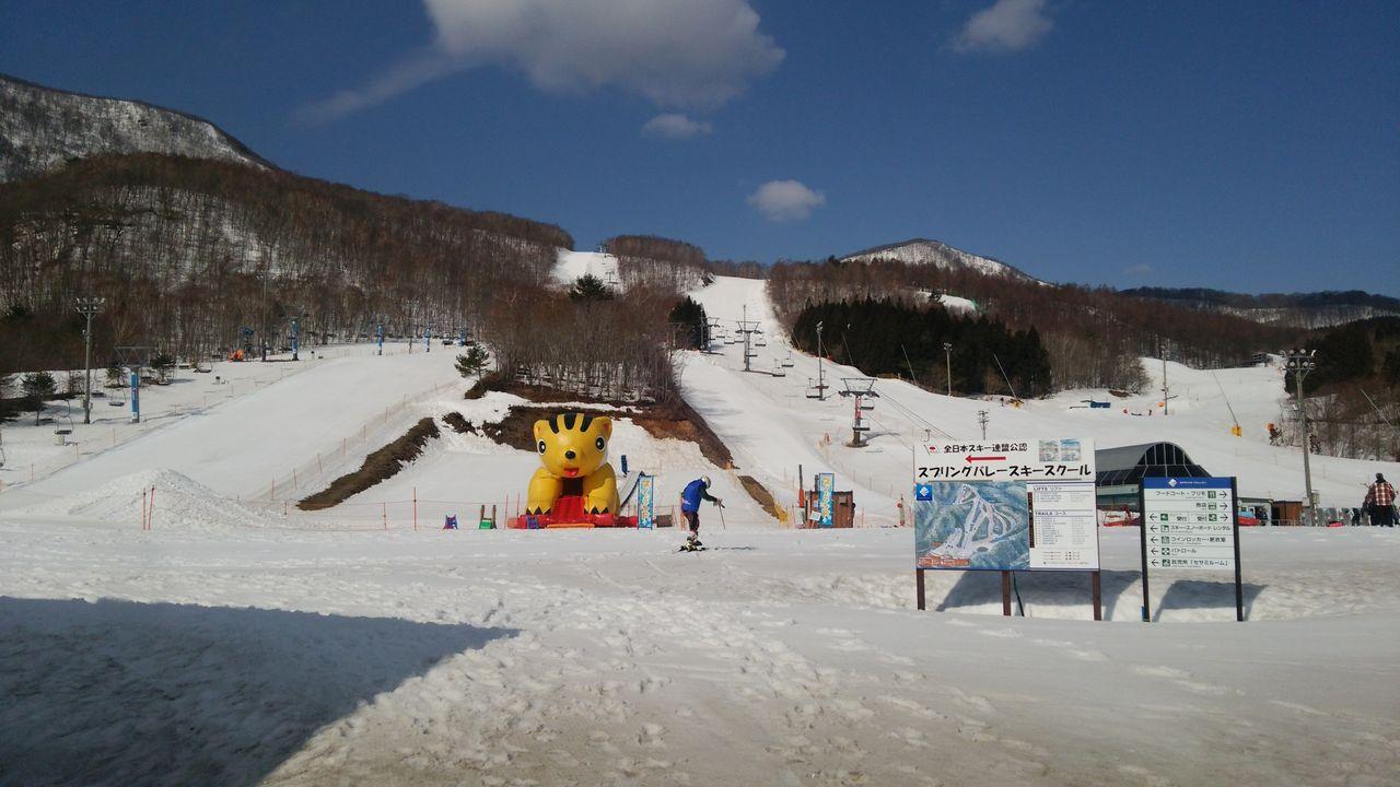 泉 場 スキー バレー 高原 スプリング