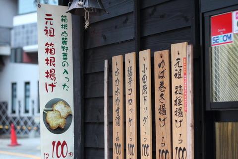箱根日帰り10