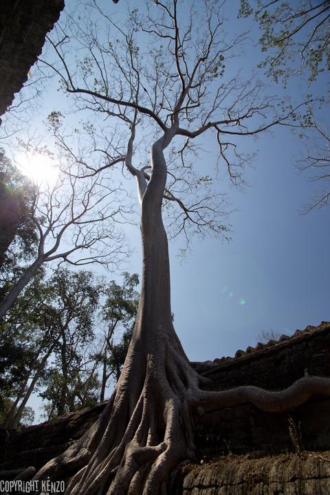 タプローム寺院_3