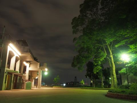 野毛山公園05