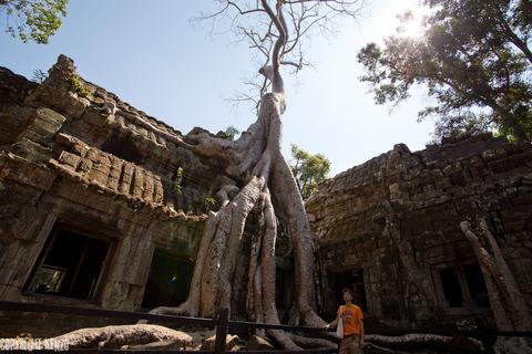 カンボジア_タ・プローム寺院_3