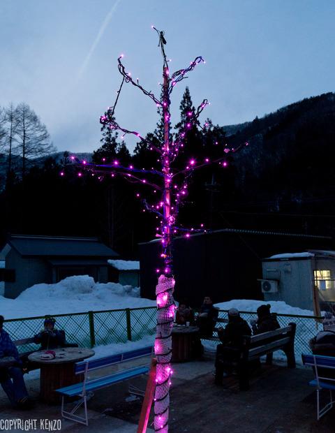 湯西川かまくら祭り2015_30