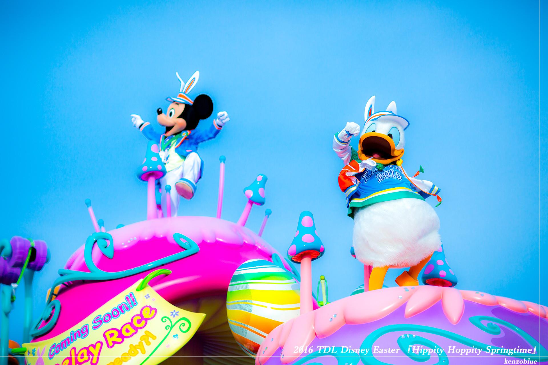 ドナ散歩『Hippity-Hoppity-Springtime』001