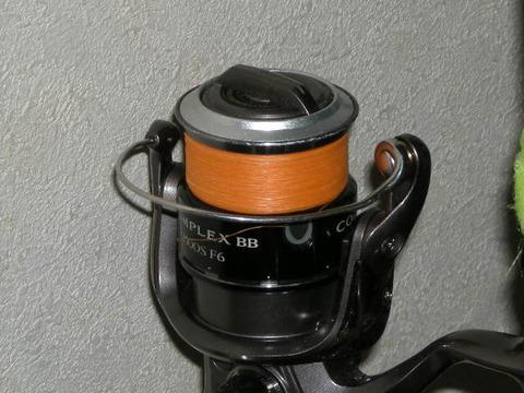 DSCN5690
