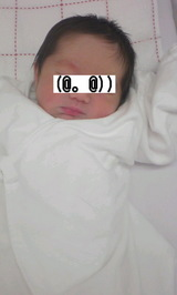 e8acd142.jpg