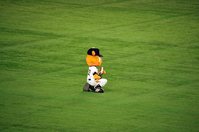 2012.10.22 東京ドーム 17
