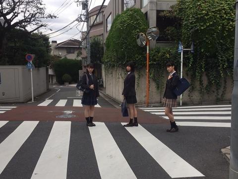 sub-member-6088_02_jpg