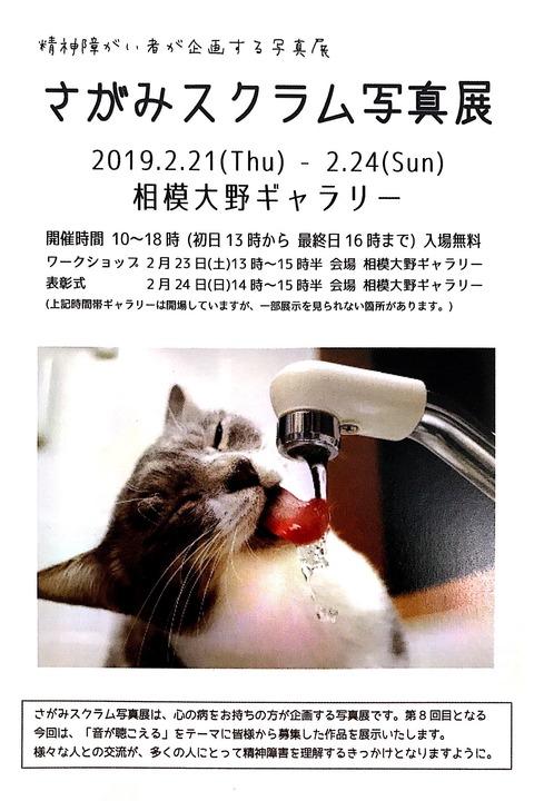 新規ドキュメント 2019-02-14 17.16.00_1