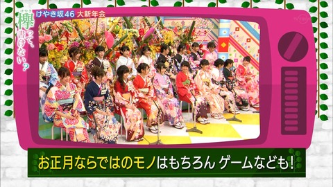 【欅坂46】けやかけ・がな推し合同で新年番組とかやらないかなあ