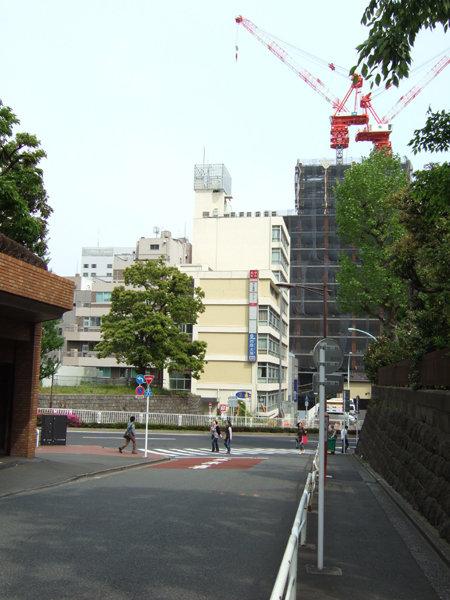紅梅坂(NO.207)2