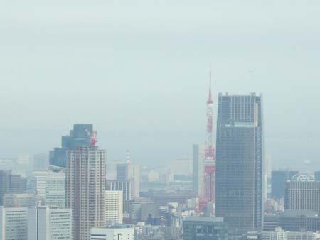 都庁南展望台03