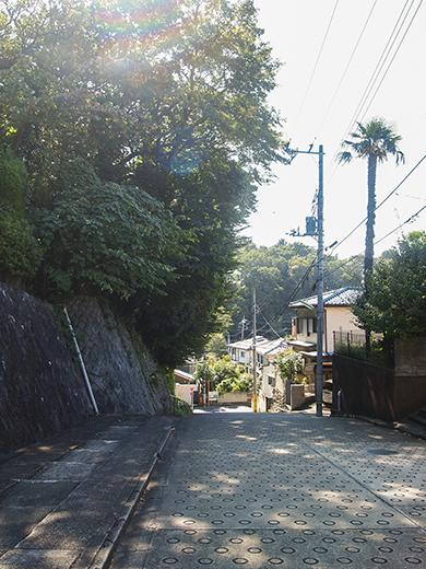無名坂(NO.255)7
