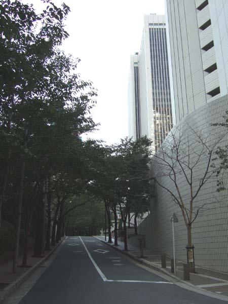 桜坂 (NO.114)4