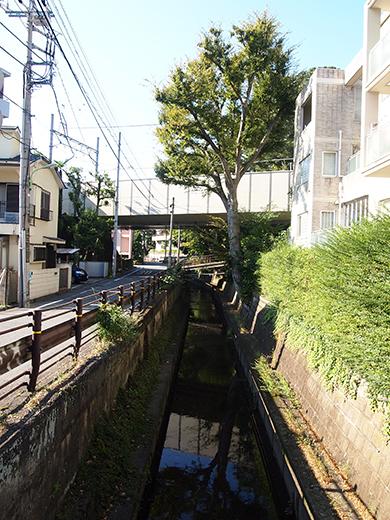 まむし坂(NO.252)2
