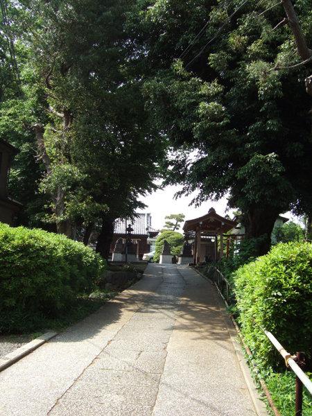 太田神社の階段2