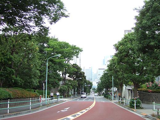 柘榴坂(NO.245)1