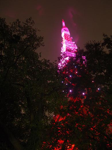 ピンクリボンライトアップ@東京タワーと坂道2