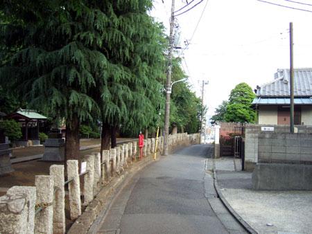 めぐみ坂(NO.230)1