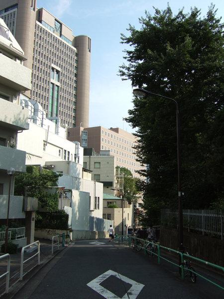 錦華坂(NO.217)1