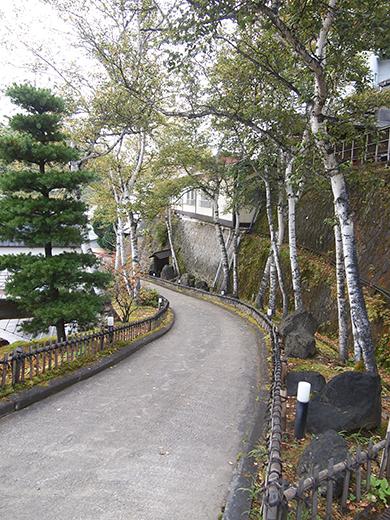 望雲坂(NO.260)10