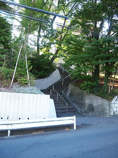 まむし坂(NO.252)7
