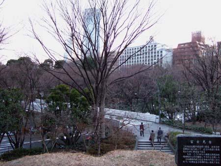 中央公園の富士見台1