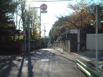 fujisaka17_sakaue