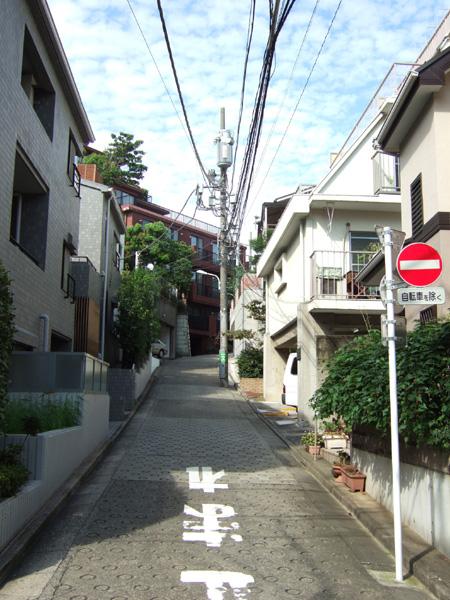 ネギ山坂(NO.176)1